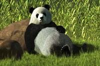 Reclining Panda Fine-Art Print