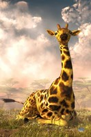 Sitting Giraffe Fine-Art Print