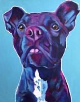 Pit Bull - Neko Fine-Art Print