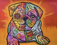 Sugar Pug Fine-Art Print
