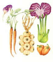 Garlic and Friends Market Fine-Art Print