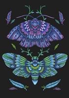 Animals Lovers - Butterflies Fine-Art Print