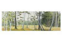 Birch Field Fine-Art Print