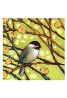 Modern Bird I Fine-Art Print