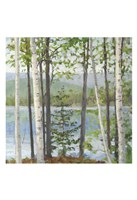 Cooper Lake I Fine-Art Print