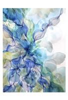 Water Flow Fine-Art Print