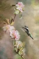 Seeking Nectar Fine-Art Print