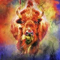 Jazzy Buffalo Fine-Art Print