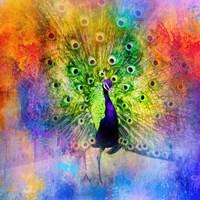 Jazzy Peacock Fine-Art Print