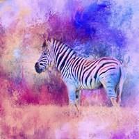 Jazzy Zebra Pink And Purple Fine-Art Print