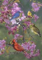Birds and Blossoms Fine-Art Print