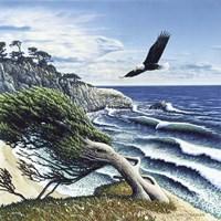 Eagle Cove Fine-Art Print