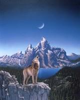 Moon Wolf Fine-Art Print