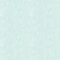Woodgrain  Blue Fine-Art Print