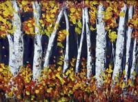 Bright Colours Fine-Art Print