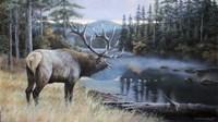 Elk River Fine-Art Print