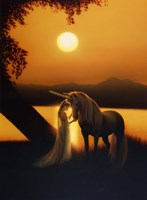 Enchanted Evening Fine-Art Print