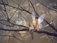Feathered Friends - N Fine-Art Print
