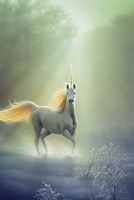 Touched By The Aurora Fine-Art Print