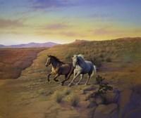 Western Skies Fine-Art Print