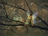 Feathered Friends - C Fine-Art Print