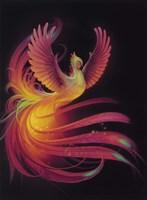 Phoenix Fine-Art Print