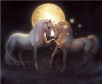 Moondance Fine-Art Print