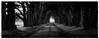 Light at the End of the Tunnel Fine-Art Print