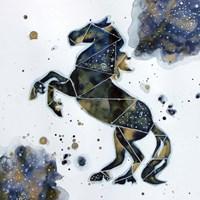 Galactic Horse Fine-Art Print