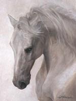 Free Spirit Fine-Art Print