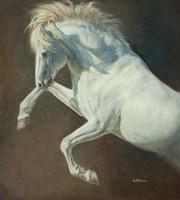 Wind Spirit Fine-Art Print
