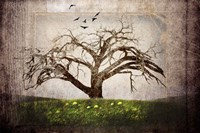 Cottonwood Tree Part 3 Fine-Art Print
