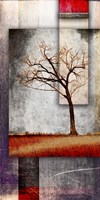Cottonwood Tree Part 4 Fine-Art Print