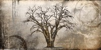 Cottonwood Tree Part 7 Fine-Art Print