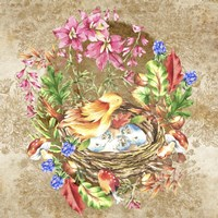 Bird's Nest Fine-Art Print