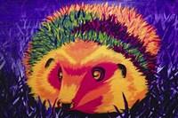 Colorful Hedgehog Fine-Art Print