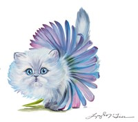 Kitten Ballerina Daisy Flower Stare Persian Cat Fine-Art Print