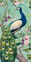 Pretty Peacock II Fine-Art Print