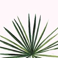 Statement Palms III Fine-Art Print