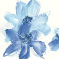 Cobalt Clematis I Fine-Art Print
