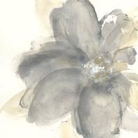 Floral Gray I Fine-Art Print
