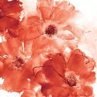 Seashell Cosmos II Red and Orange Fine-Art Print