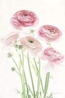 Light and Bright Floral V Fine-Art Print