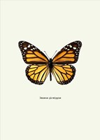 Yellow Butterfly Fine-Art Print