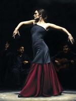 Encantado por Flamenco Fine-Art Print