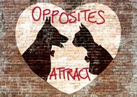 Opposites attract Fine-Art Print