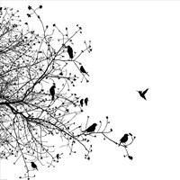 Bird I Fine-Art Print