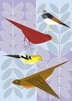 Songbird Squares Fine-Art Print