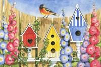 Bird House Row Fine-Art Print