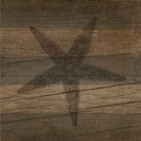 Rustic Starfish Fine-Art Print